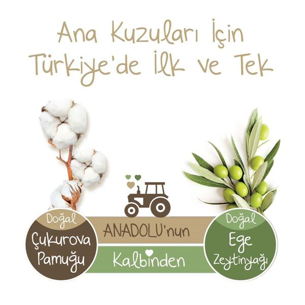 Baby Turco Doğadan Külot Bez 4 Numara Maxi 120 Adet